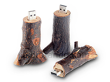 USB Nature Wooden Flash Drive